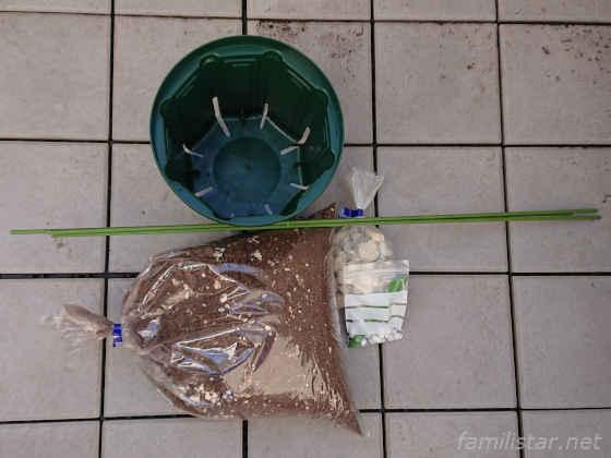 ブルーベリー簡単鉢植え栽培6点セット